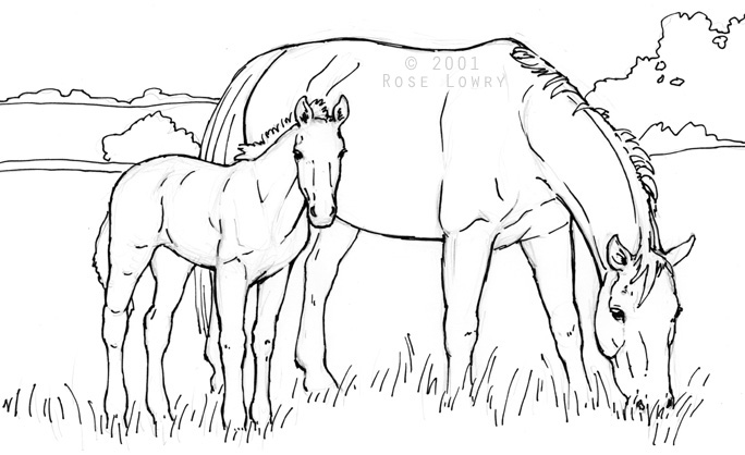 horse drawings to color photo5 - Coloring Pages Horses Foals