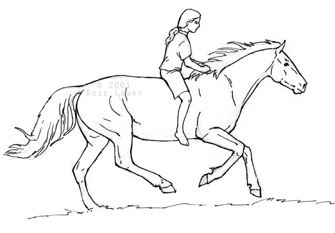 Horse drawings coloring book sketch ccuart Gallery